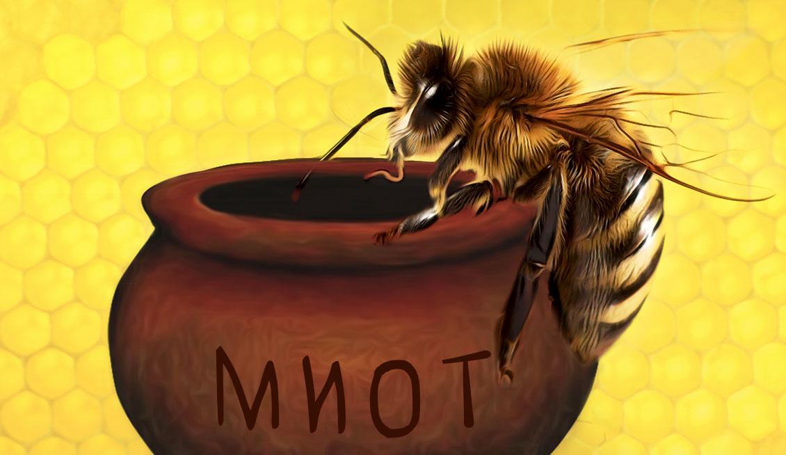 Платёжная карта Билайн: есть ли мёд?