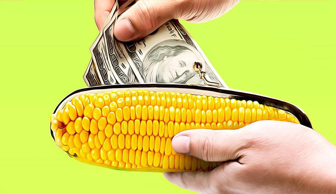 Валютный кошелек Кукуруза: что это такое и с чем его едят