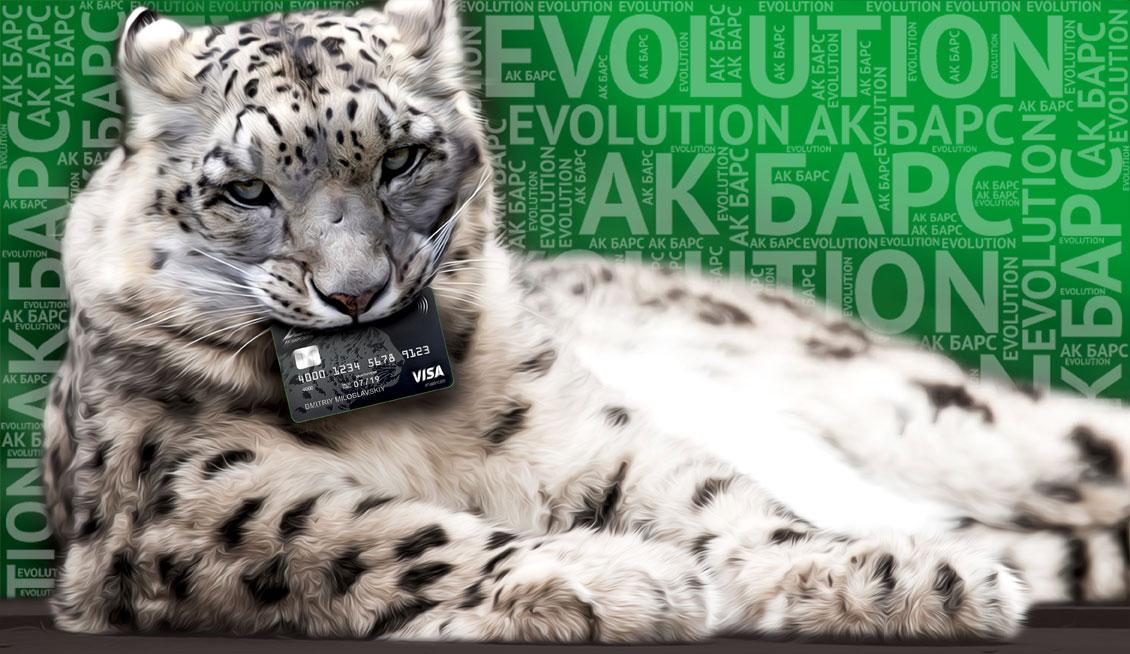 Карта Ак Барс Evolution: Лучший вариант?
