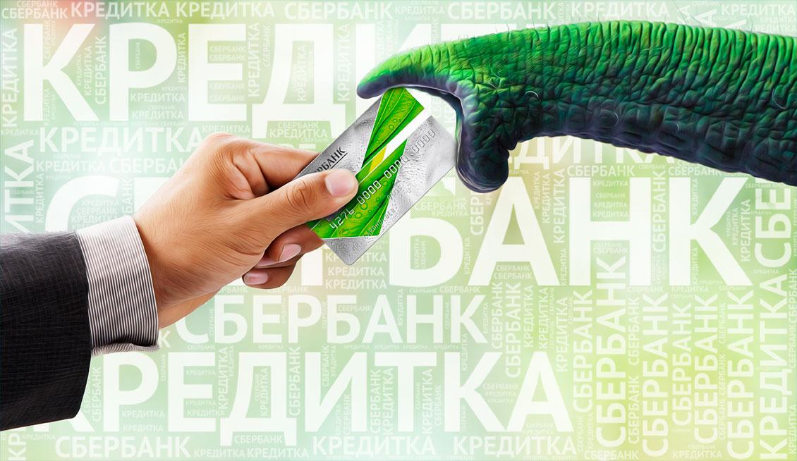 Кредитная карта Сбербанка: зачем она нужна