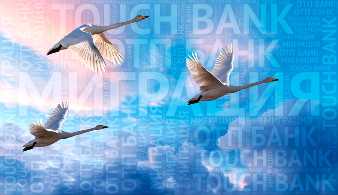 Карта ОТП Банка для клиентов Touch Bank: стоит ли мигрировать